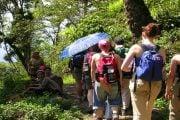 Randonnée-au-Laos-1