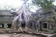 Temple-Ta-Prohm