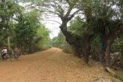 Village-local-Siem-Reap